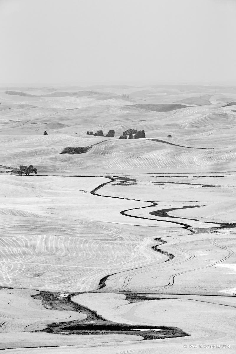 STEPTOE BUTTE STATE PARK PALOUSE WASHINGTON BLACK AND WHITE VERTICAL