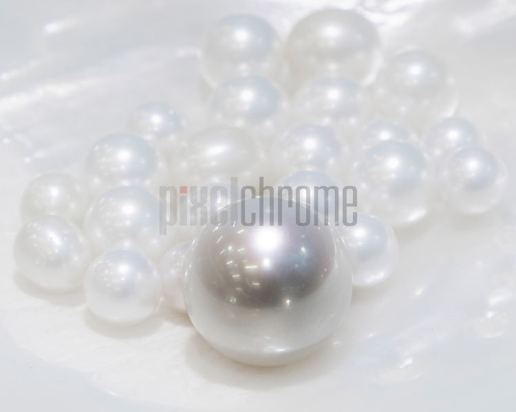 22,.24mm Precious Pearl Harvested at Cygnet Bay