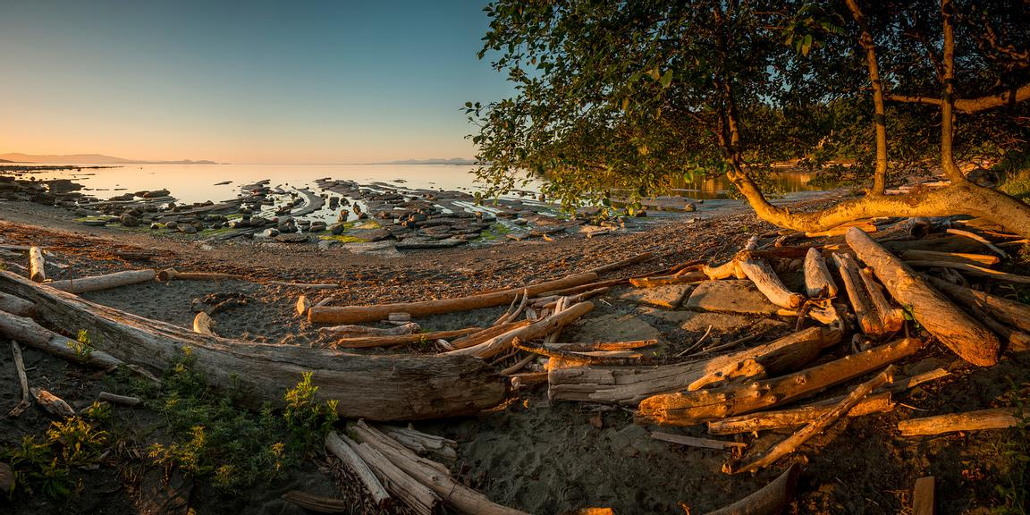 Sunrise lights up the scene at Sandpiper Beach on Hornby Island, BC