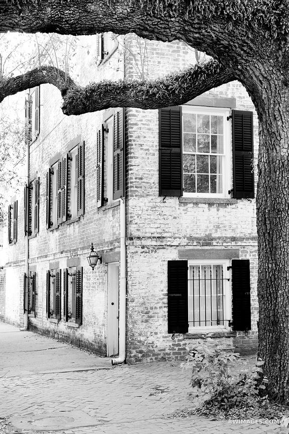 SAVANNAH GEORGIA BLACK AND WHITE VERTICAL