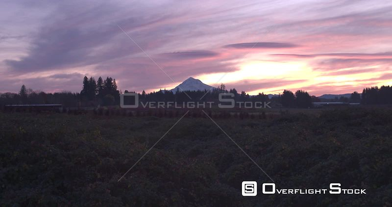 Sunrise Over Nursery Farmland Mt Hood Oregon
