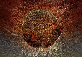 Abstract Hairy Fire Virus