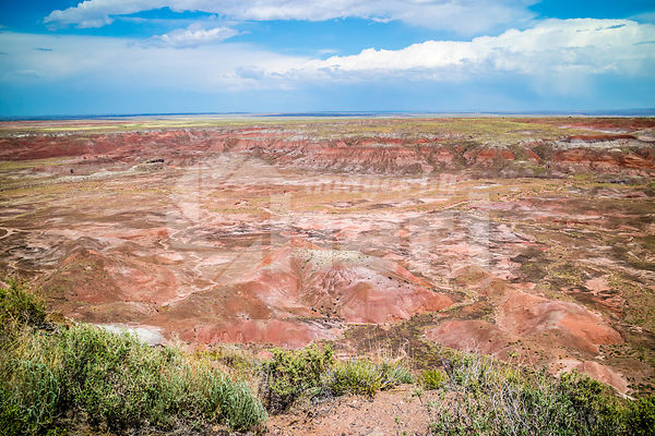 Pintado Point in Petrified Forest National Park, Arizona