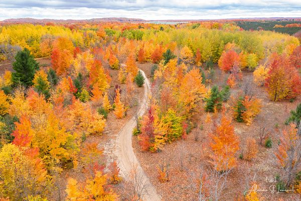 Up_North_Fall_Color_Drone