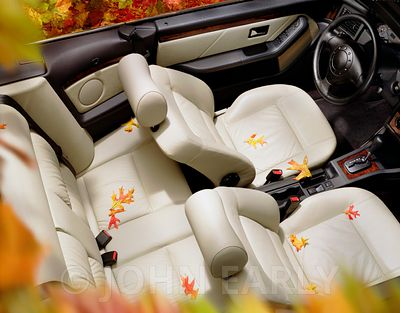 Overhead View of Convertible with Fall Leaves
