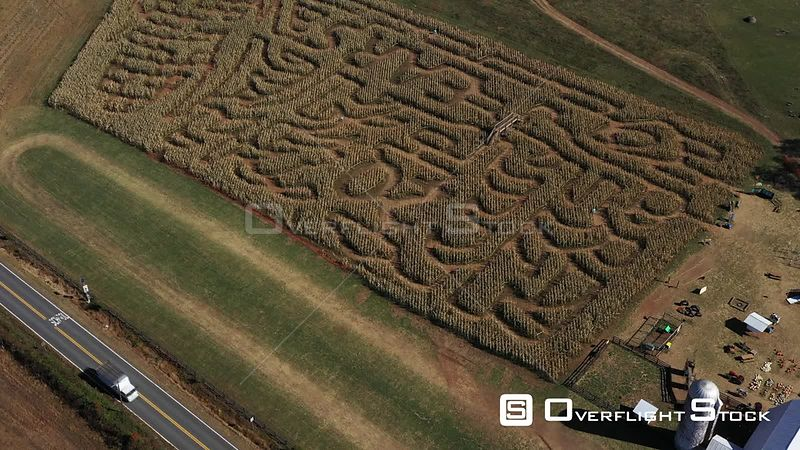 Corn Maze, The Plains, Virginia, USA