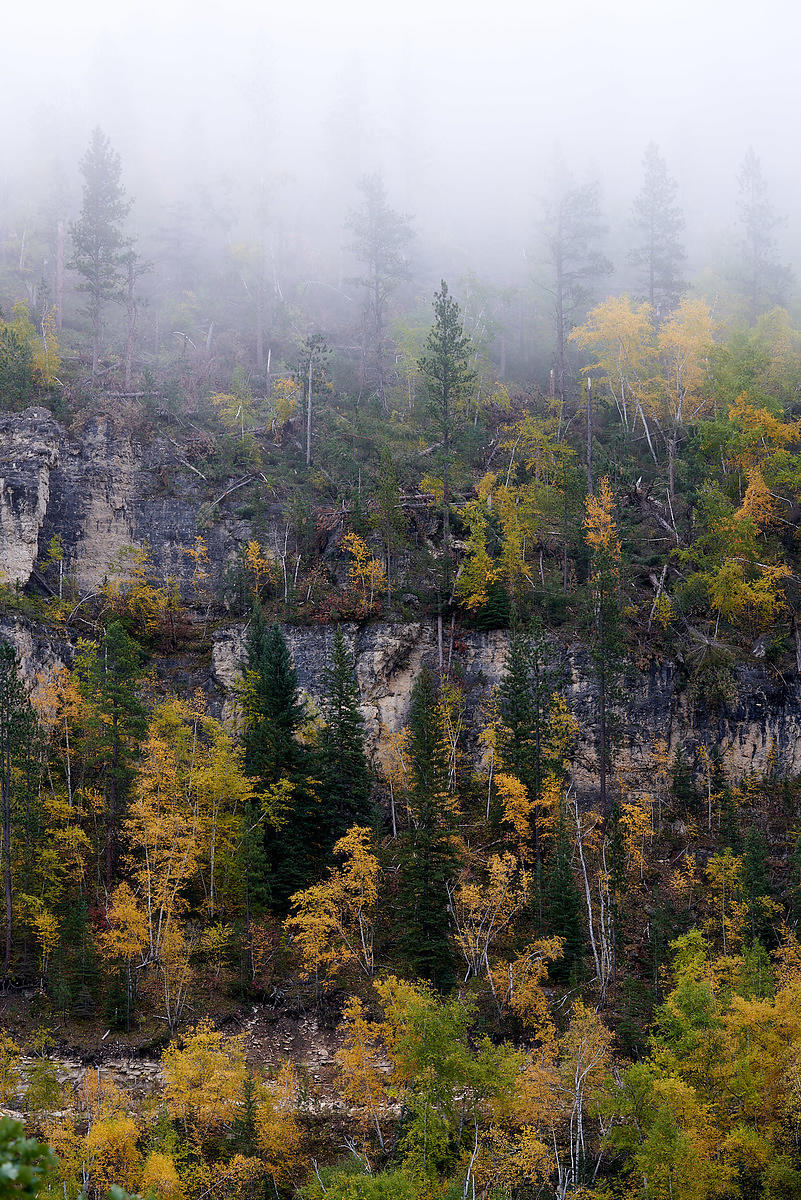 Spearfish_Canyon_Misty_Morning