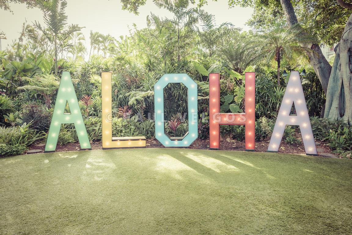 Maui Hawaii Aloha Sign Retro Photo