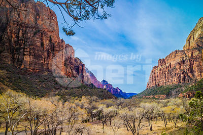 Mountain Ridges in Zion National Park, Utah