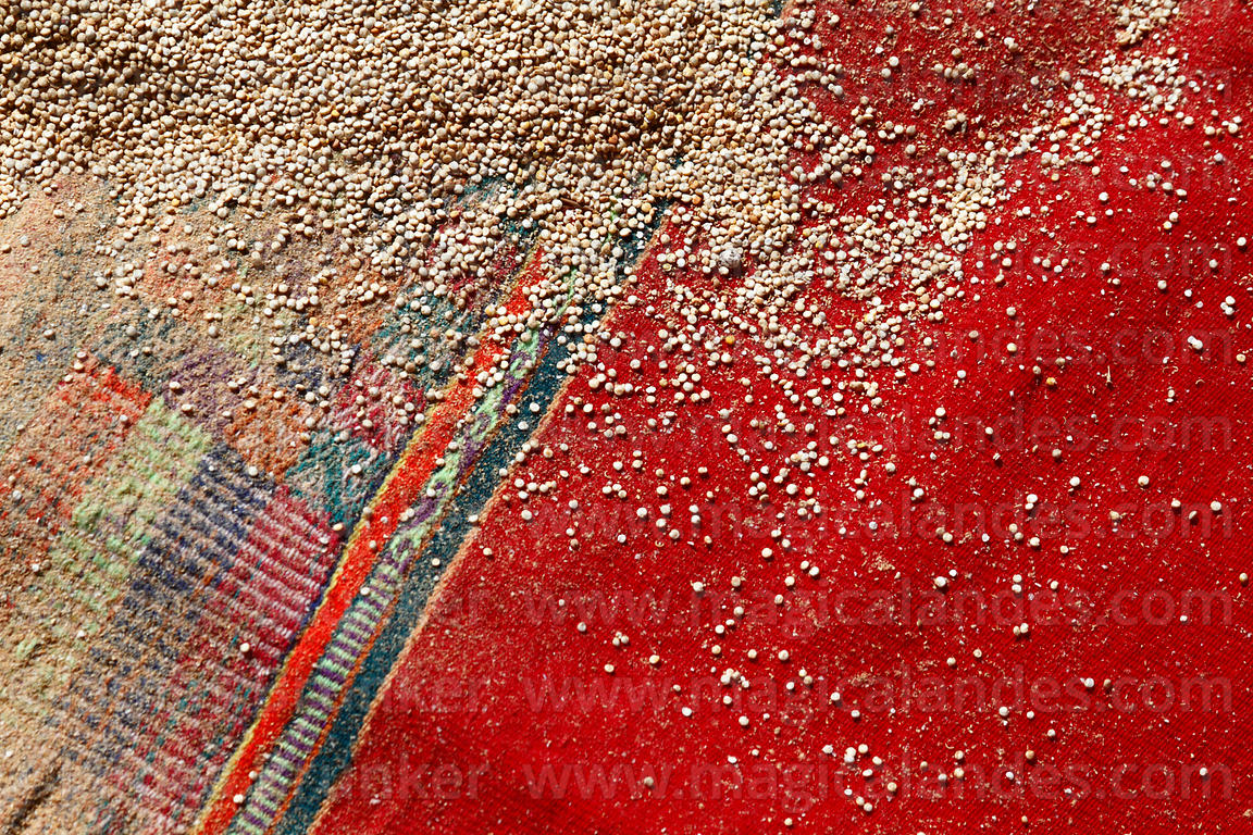 Quinoa grains on a red cloth, Bolivia