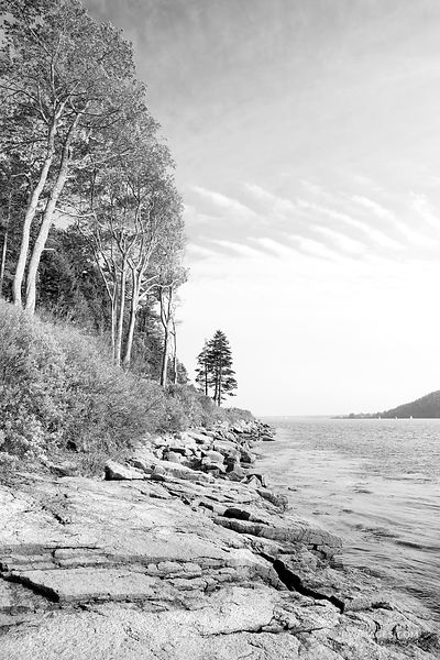 SOMES SOUND MT DESERT ISLAND ACADIA NATIONAL PARK MAINE BLACK AND WHITE VERTICAL