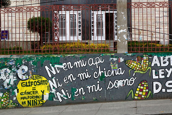 Mural protesting against laws to allow transgenic crops on wall next to main UMSA University, La Paz, Bolivia