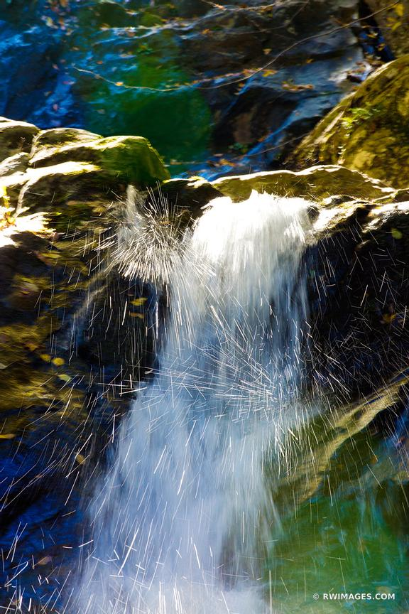 NATURE ABSTRACT BLACK HOLLOW FALLS SHENANDOAH NATIONAL PARK VIRGINIA COLOR VERTICAL