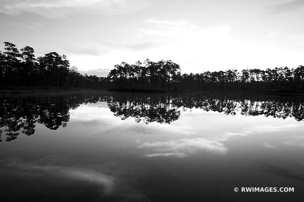 DAWN LONG PINE KEY LAKE EVERGLADES NATIONAL PARK FLORIDA BLACK AND WHITE