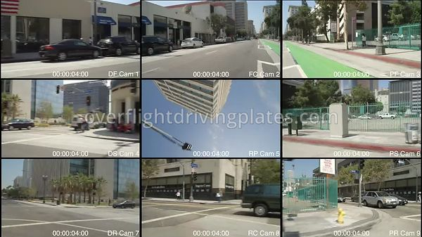 Spring Street Protesters  Los Angeles California USA - Driving Plate Preview 2012