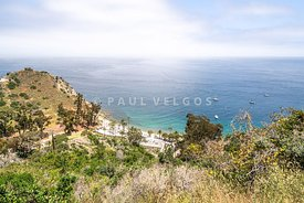 Catalina Island Descanso Bay Photo