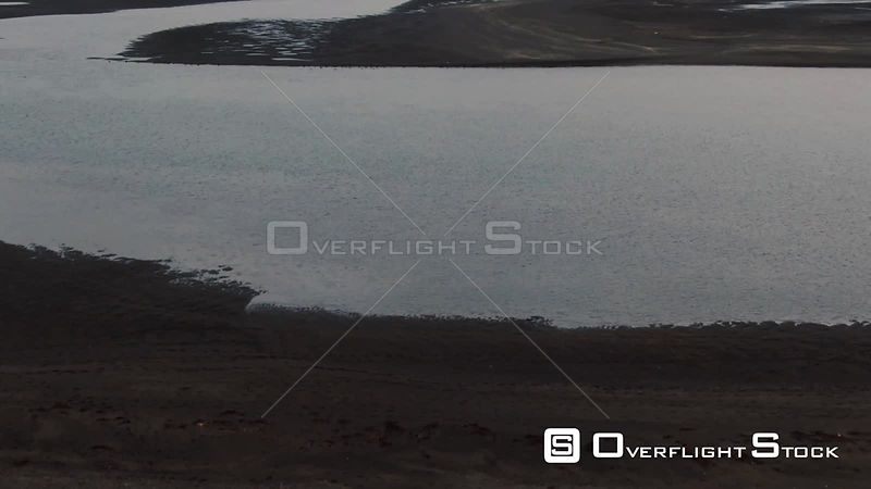 A Black Sandy Beach With a Seal Colony in North Iceland