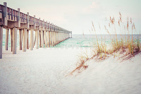 Pensacola Florida Gulf Pier and Beach Grass Photo