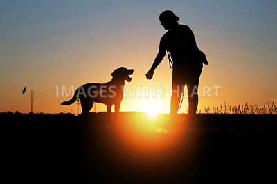 Lab Silhouette With Owner And Ball