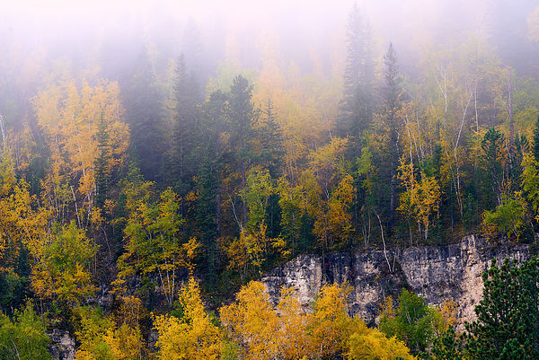 Spearfish_Canyon
