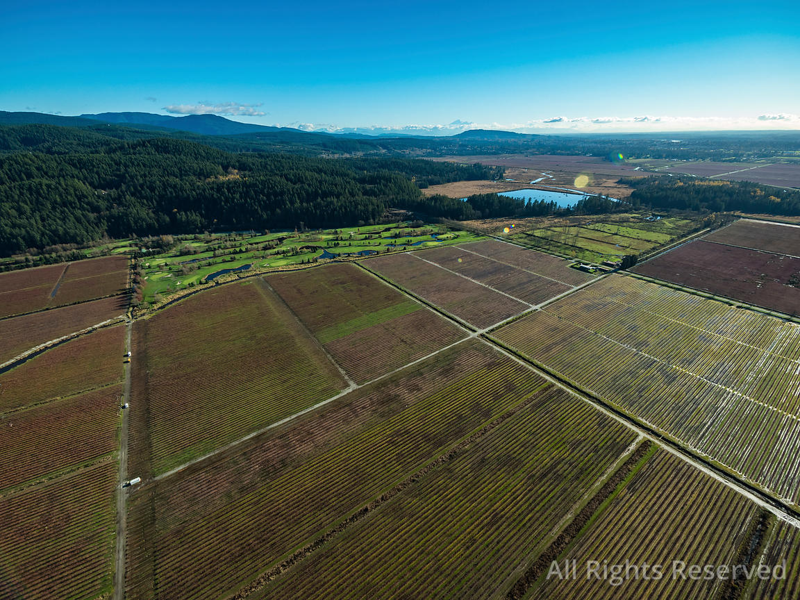 Agriculture Pitt Meadows