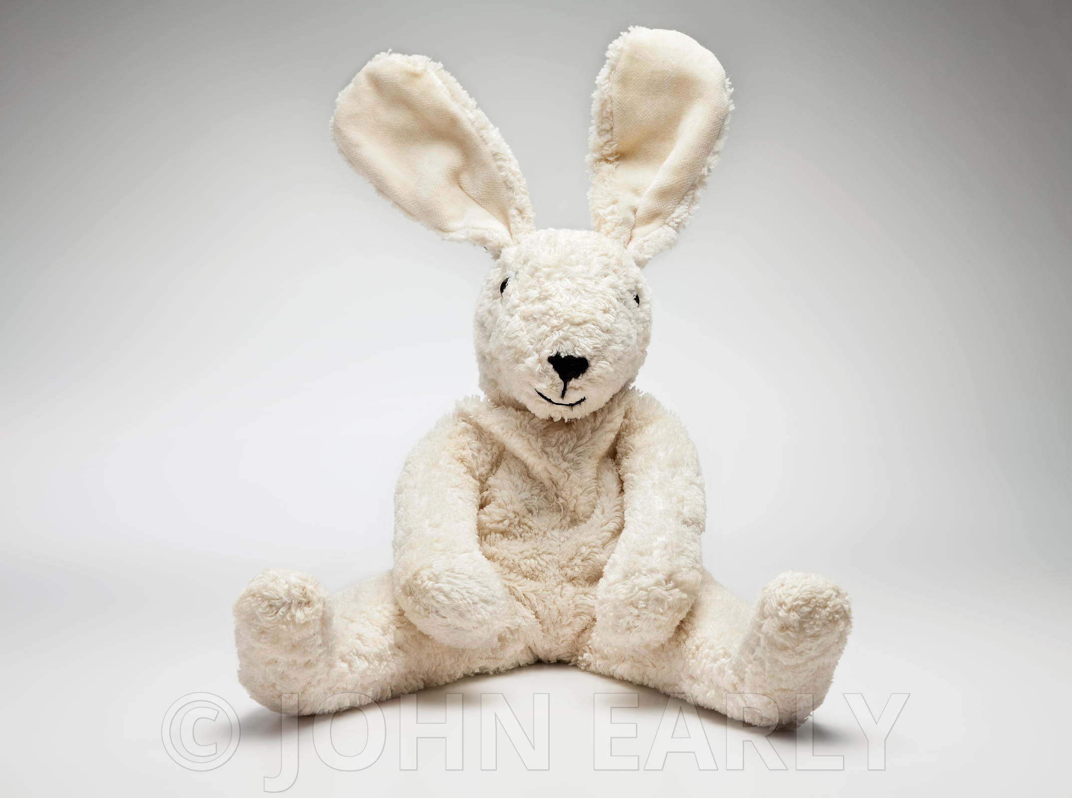 Stuffed Toy (Bunny Rabbit) On White Pose #4
