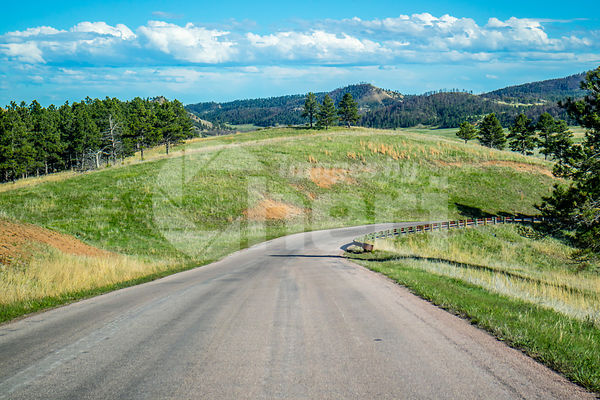 A long way down the road of Custer State Park, South Dakota