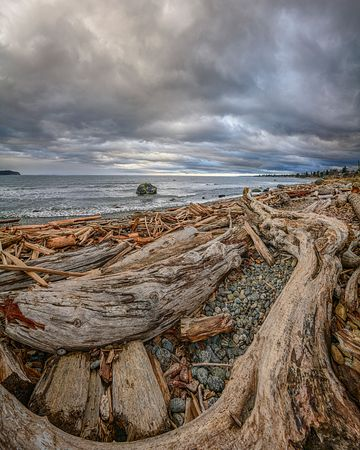 Logs on beach Campbell River 2