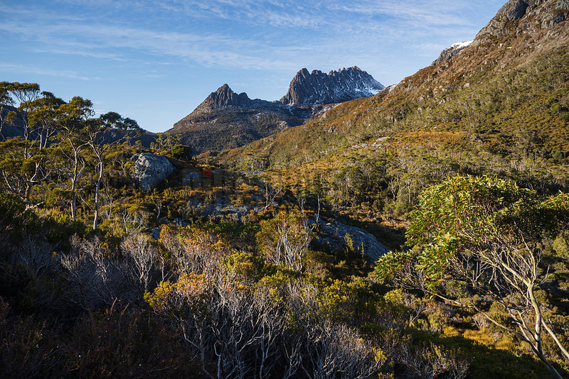 View of Cradle Mountain from the Lake Lilla Track