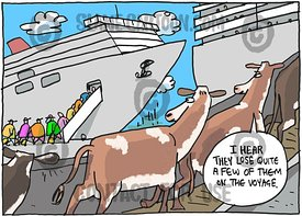 Live Exports