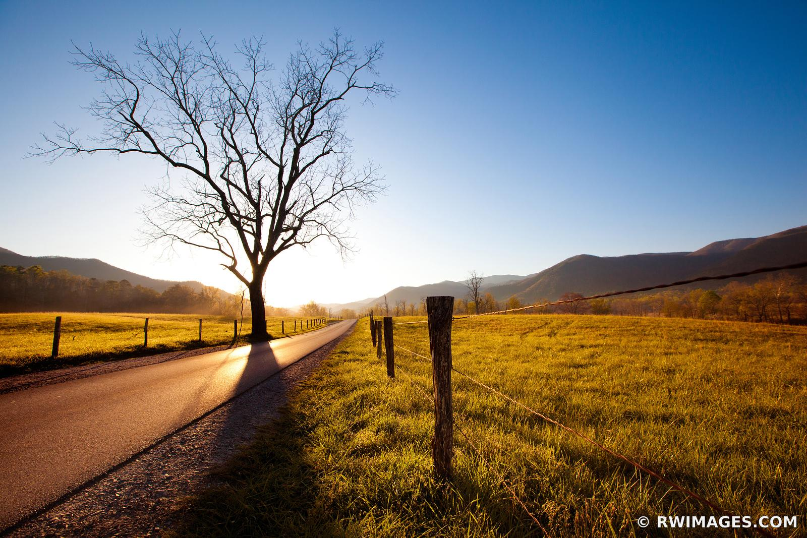 CADES COVE LOOP ROAD SUNRISE SMOKY MOUNTAINS TENNESSEE APPALACHIAN LANDSCAPE