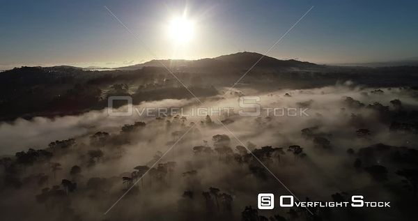 Misty Fog and Trees San Francisco California Drone View