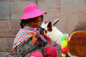 Quechua girl sitting on pavement with her pet baby alpaca (Vicugna pacos), Cusco, Peru