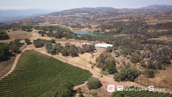 Vineyards in Napa Valley California Drone Aerial View
