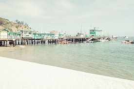 Catalina Island Green Pleasure Pier Photo