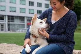 Young Asian Woman with Dog on Lap