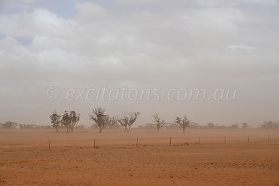 Local raised dust, Mildura, Australia.