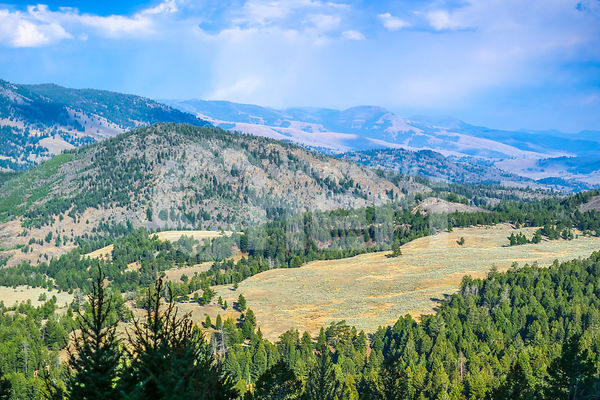 A beautiful overlooking view of nature in Yellowstone National Park, Wyoming