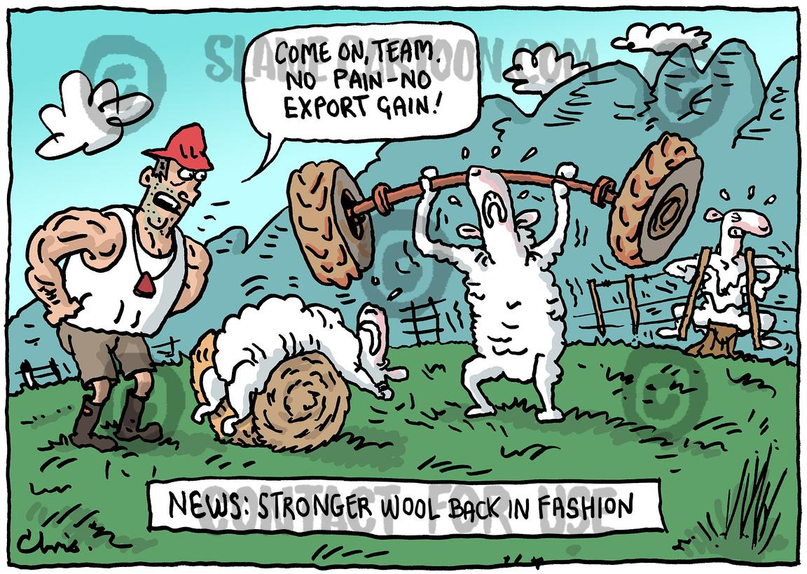 Stronger Wool Fashion