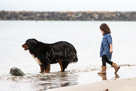 Little Girl Walking Toward Dog Standing in Surf