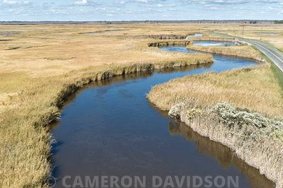 Drone Aerial of marshes along the Nanticoke River of Maryland