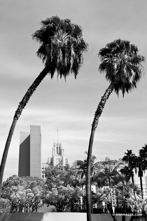 PALM TREES DOWNTOWN LOS ANGELES CALIFORNIA BLACK AND WHITE VERTICAL