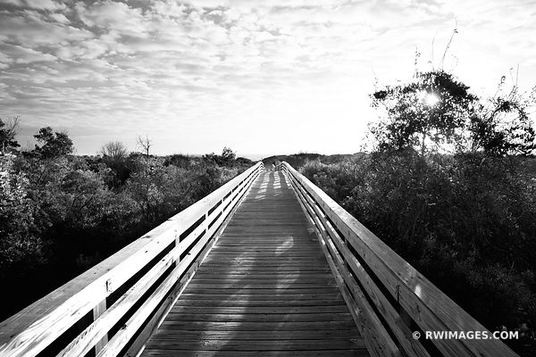 DUNGENESS BEACH WOODEN BOARDWALK CUMBERLAND ISLAND GEORGIA BLACK AND WHITE
