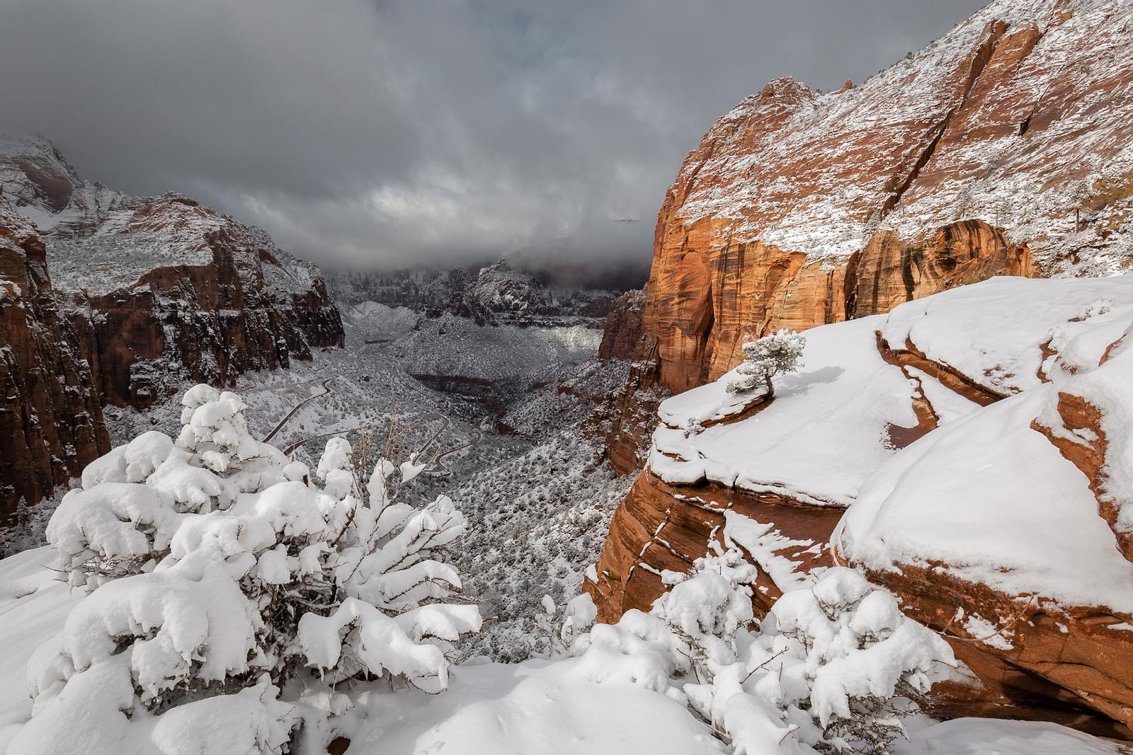 SNOWFALL IN ZION NP