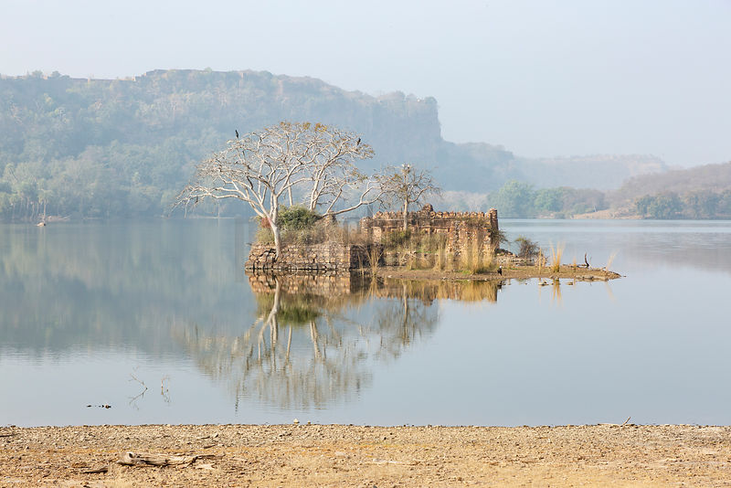 Reflection of a Ruin in Padam Talao (Lake)