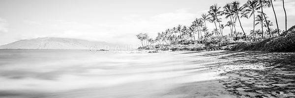 Maui Hawaii Mokapu Beach Wailea Black and White Panorama Photo