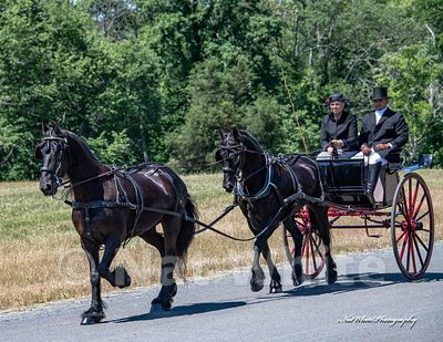 2021_calendar_Morven_Park_carriage_Date_(June_19_2016Month_DD_YYYY)1_1000_sec_at_f_7.1_