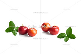 Acerolas and their foliage isolated on white background