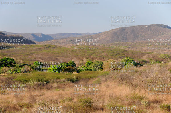 Caatinga - Serra do Machado - Canindé - CE