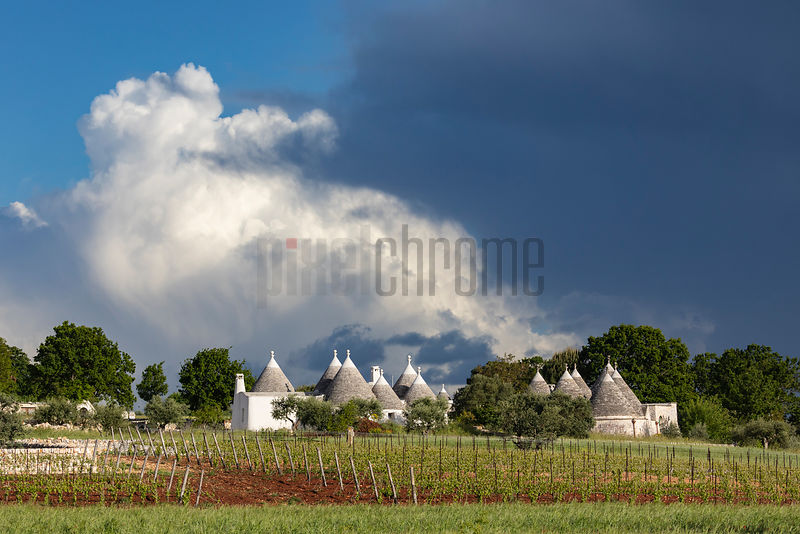 A Trulli Complex in the Countryside near Locorotondo